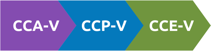 citrix virtualization certification path, citrix virtualizaion exam dumps, CCA-V dumps, 1Y0-201 dumps, CCP-V Dumps, 1Y0-301 dumps